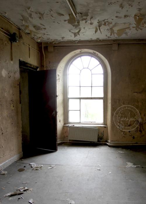 asylum16