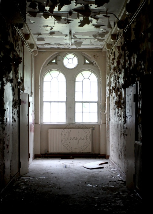 asylum17