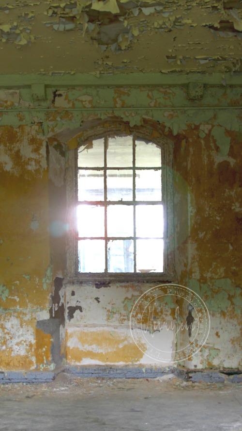 asylum8